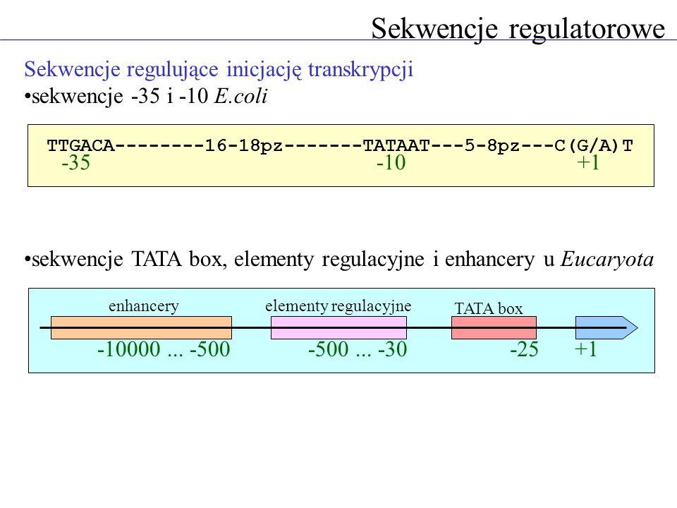 Sekwencje regulatorowe