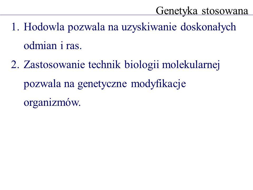 Genetyka stosowanaHodowla pozwala na uzyskiwanie doskonałych odmian i ras.