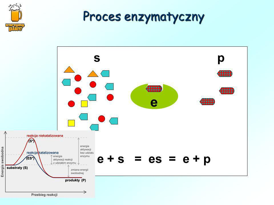 Proces enzymatyczny s p e e + s = es = e + p