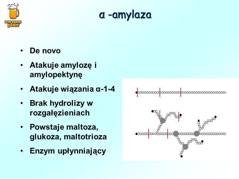 α -amylaza De novo Atakuje amylozę i amylopektynę