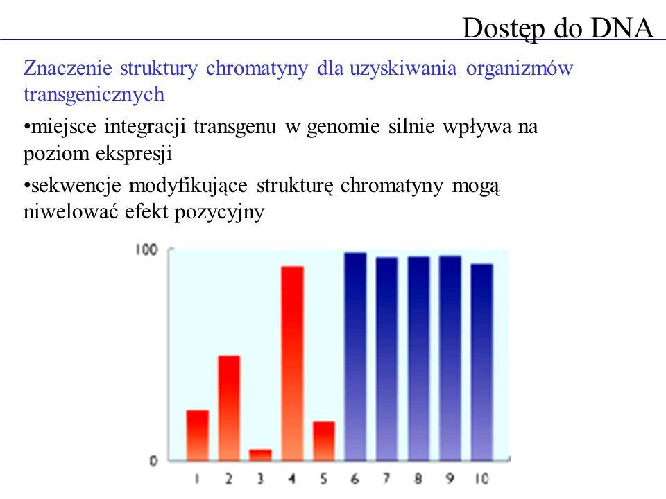 Dostęp do DNAZnaczenie struktury chromatyny dla uzyskiwania organizmów transgenicznych.