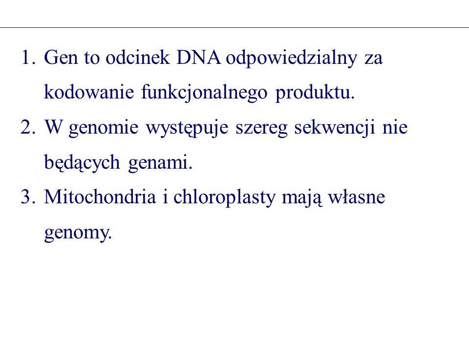 Gen to odcinek DNA odpowiedzialny za kodowanie funkcjonalnego produktu.