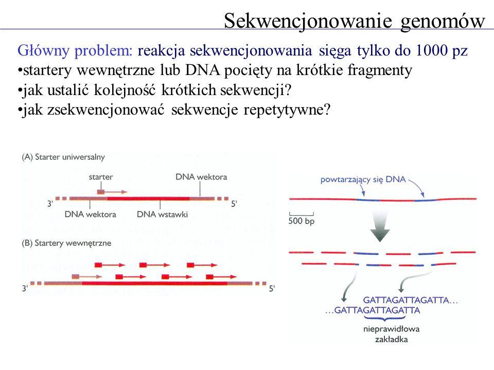 Sekwencjonowanie genomów