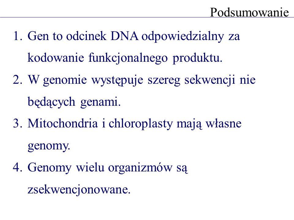 Podsumowanie Gen to odcinek DNA odpowiedzialny za kodowanie funkcjonalnego produktu. W genomie występuje szereg sekwencji nie będących genami.