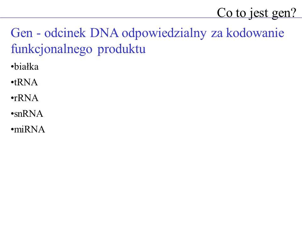 Gen - odcinek DNA odpowiedzialny za kodowanie funkcjonalnego produktu