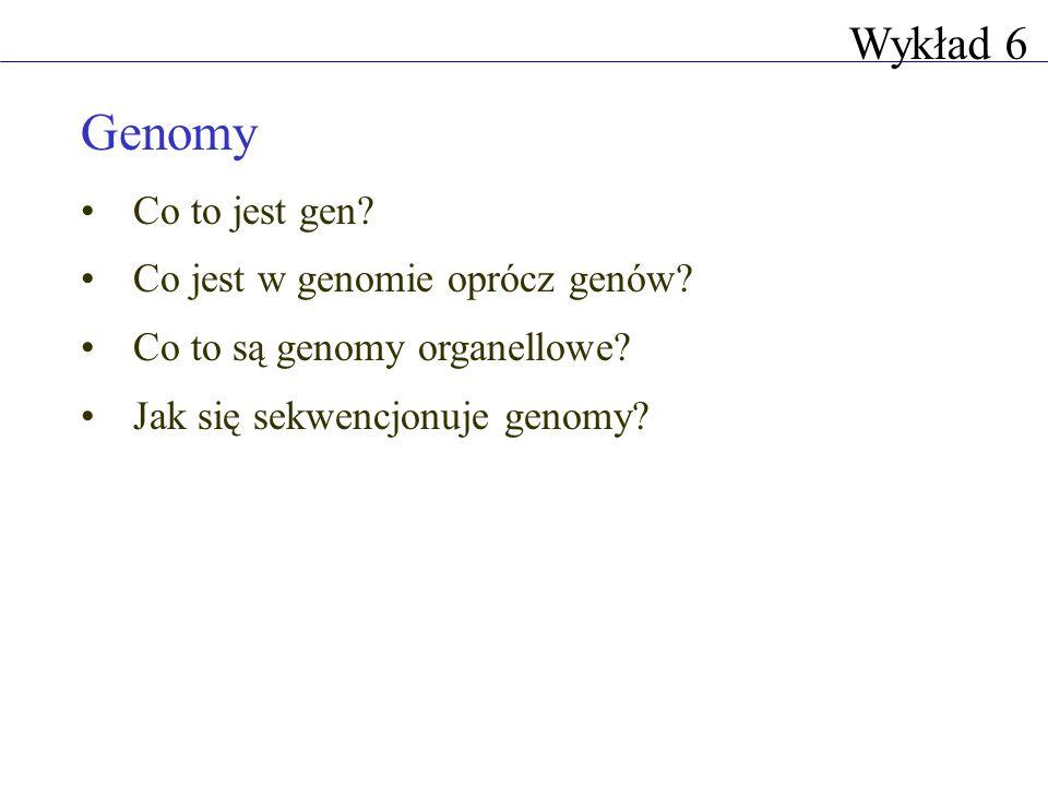 Genomy Wykład 6 Co to jest gen Co jest w genomie oprócz genów