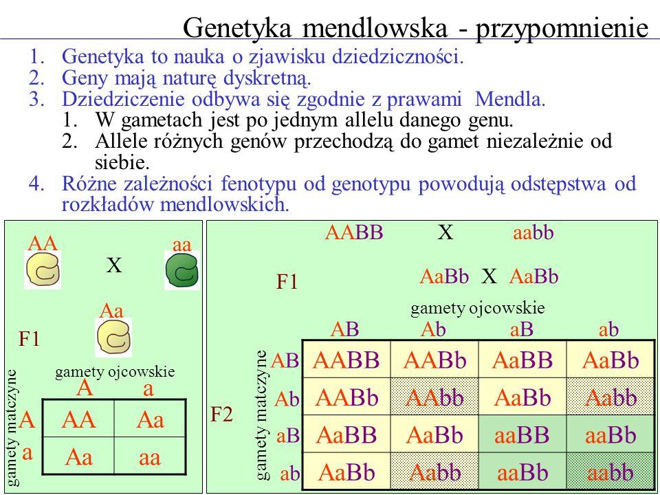 Genetyka mendlowska - przypomnienie