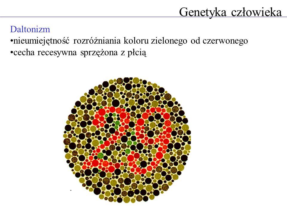 Genetyka człowieka Daltonizm