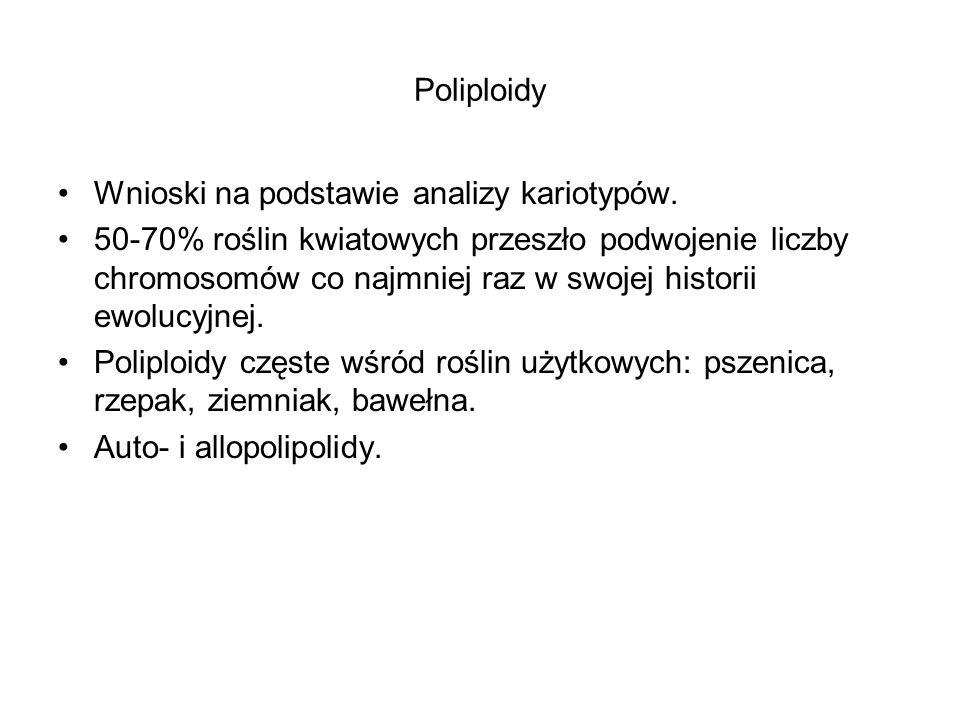 Poliploidy Wnioski na podstawie analizy kariotypów.