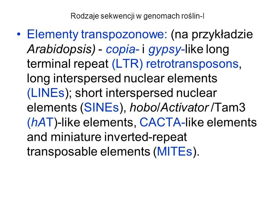 Rodzaje sekwencji w genomach roślin-I