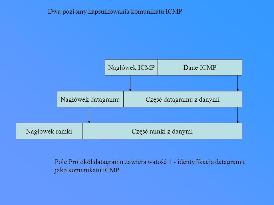 Część datagramu z danymi