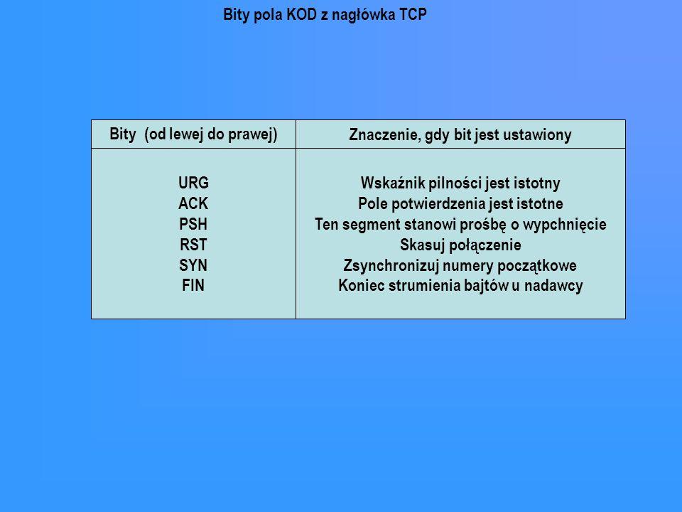 Bity pola KOD z nagłówka TCP