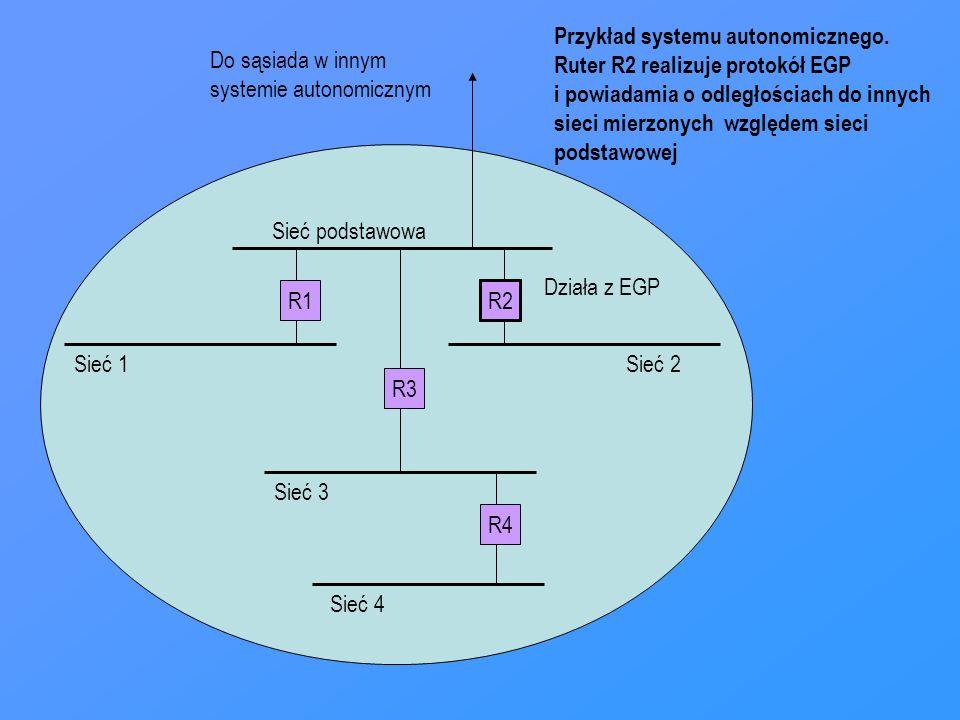 Przykład systemu autonomicznego.