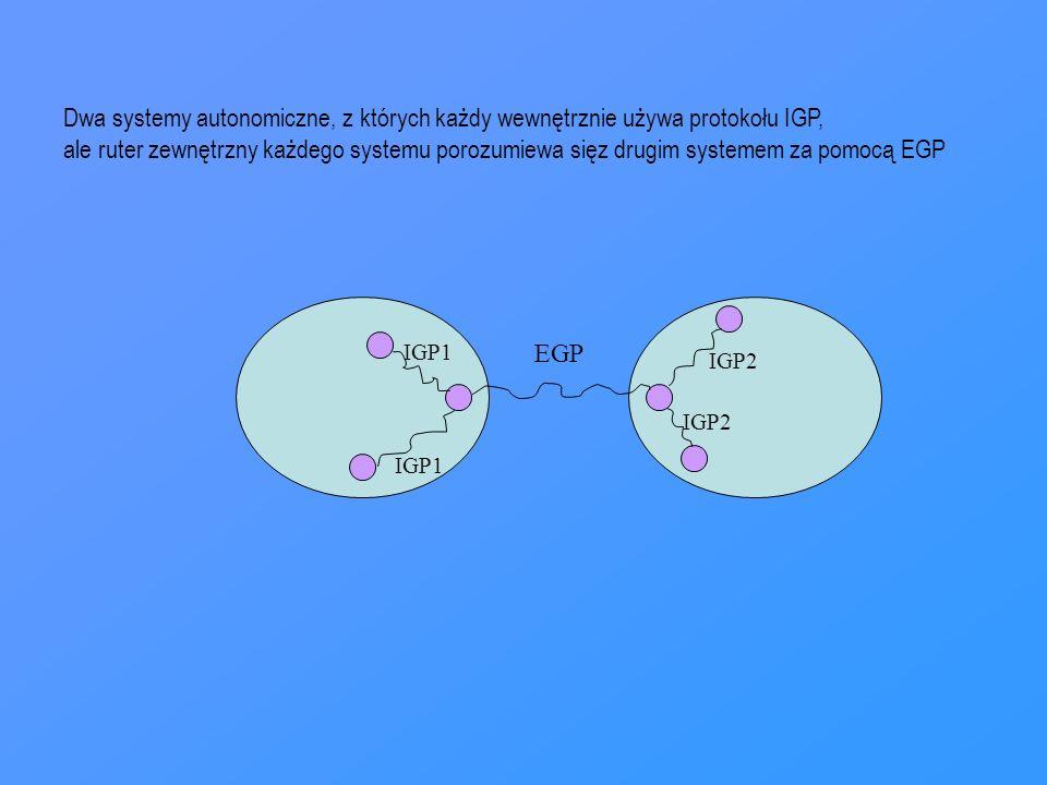 Dwa systemy autonomiczne, z których każdy wewnętrznie używa protokołu IGP,