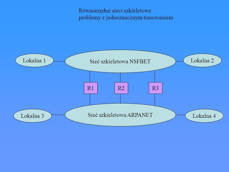 Równorzędne sieci szkieletowe problemy z jednoznacznym trasowaniem