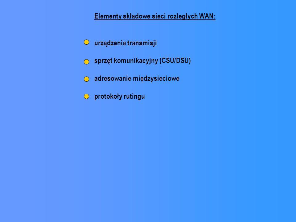 Elementy składowe sieci rozległych WAN: