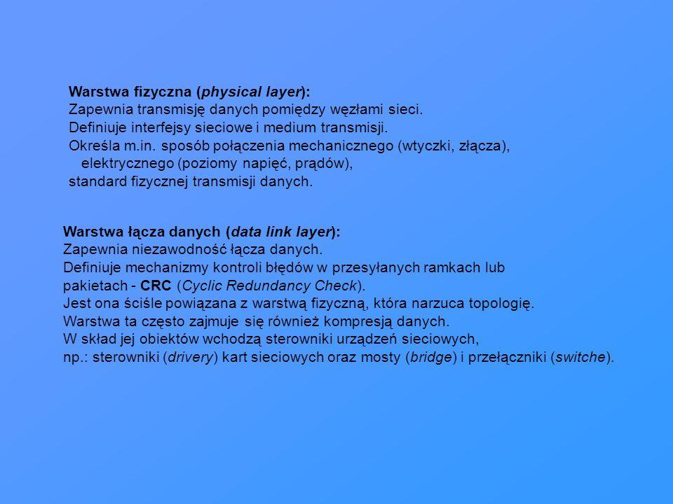 Warstwa fizyczna (physical layer):