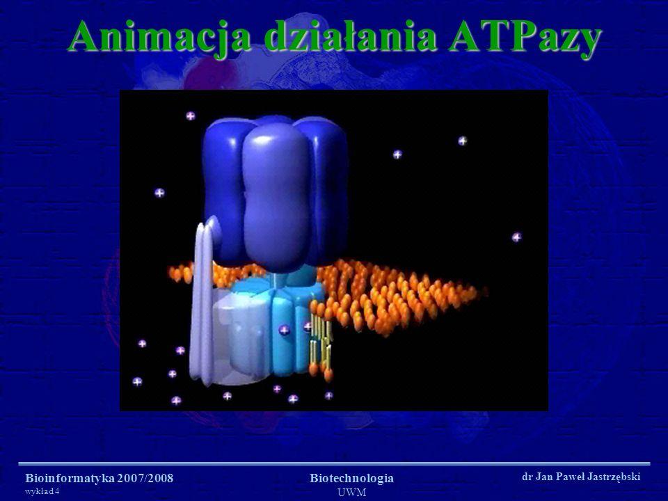 Animacja działania ATPazy