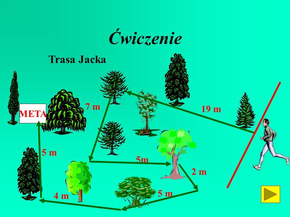 Ćwiczenie Trasa Jacka 7 m 19 m META 5 m 5m 2 m 5 m 4 m