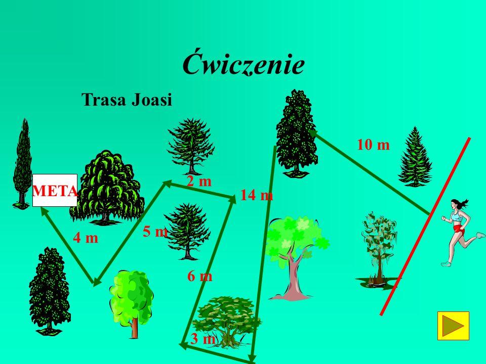 Ćwiczenie Trasa Joasi 10 m 2 m META 14 m 5 m 4 m 6 m 3 m