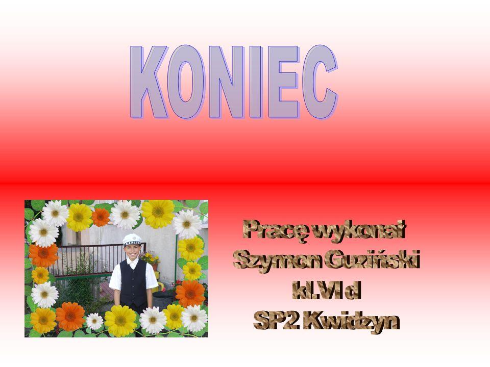 KONIEC Pracę wykonał Szymon Guziński kl.VI d SP2 Kwidzyn