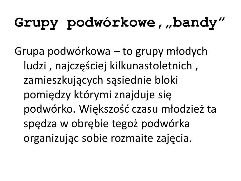 """Grupy podwórkowe,""""bandy"""