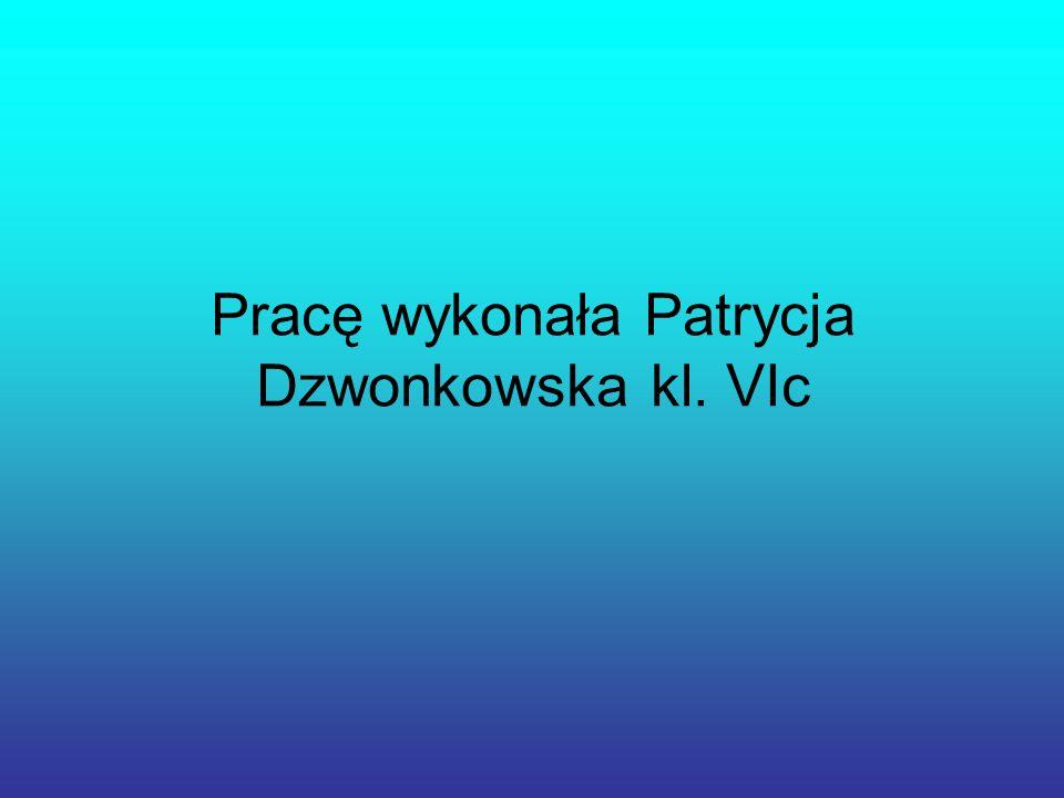 Pracę wykonała Patrycja Dzwonkowska kl. VIc