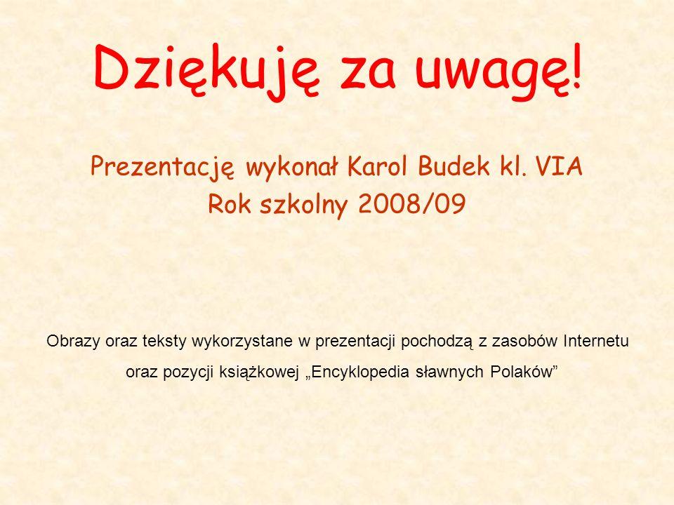 Dziękuję za uwagę! Prezentację wykonał Karol Budek kl. VIA