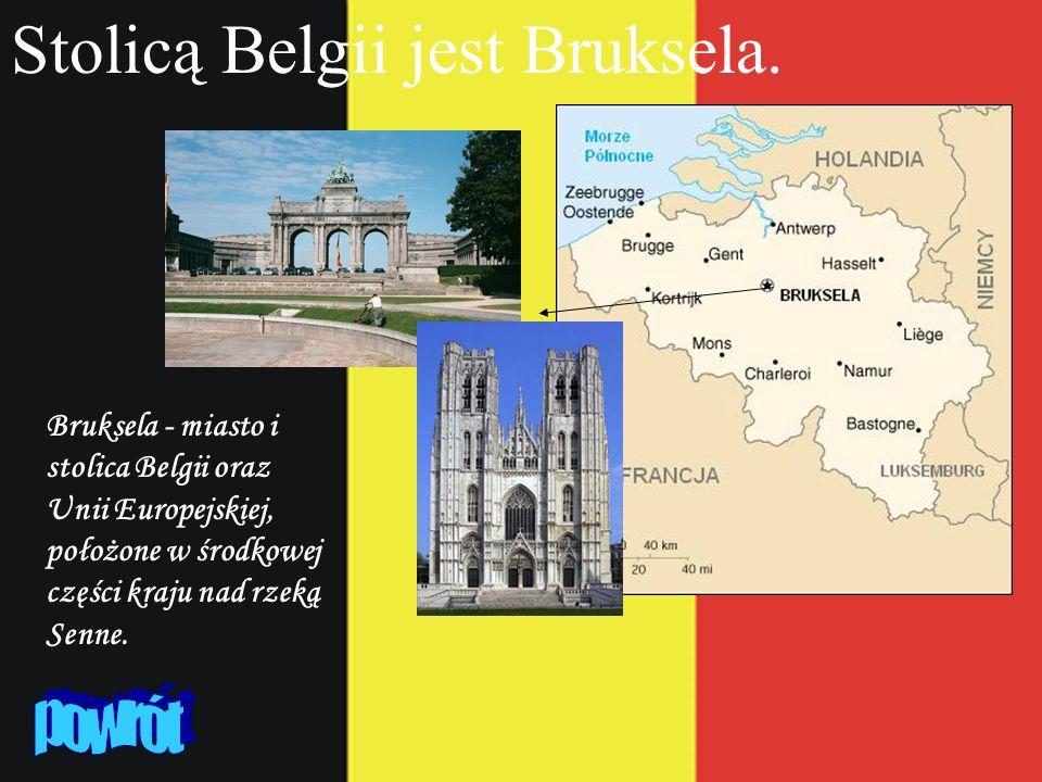 Stolicą Belgii jest Bruksela.