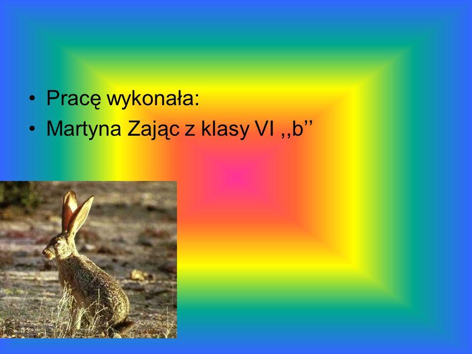 Pracę wykonała: Martyna Zając z klasy VI ,,b''