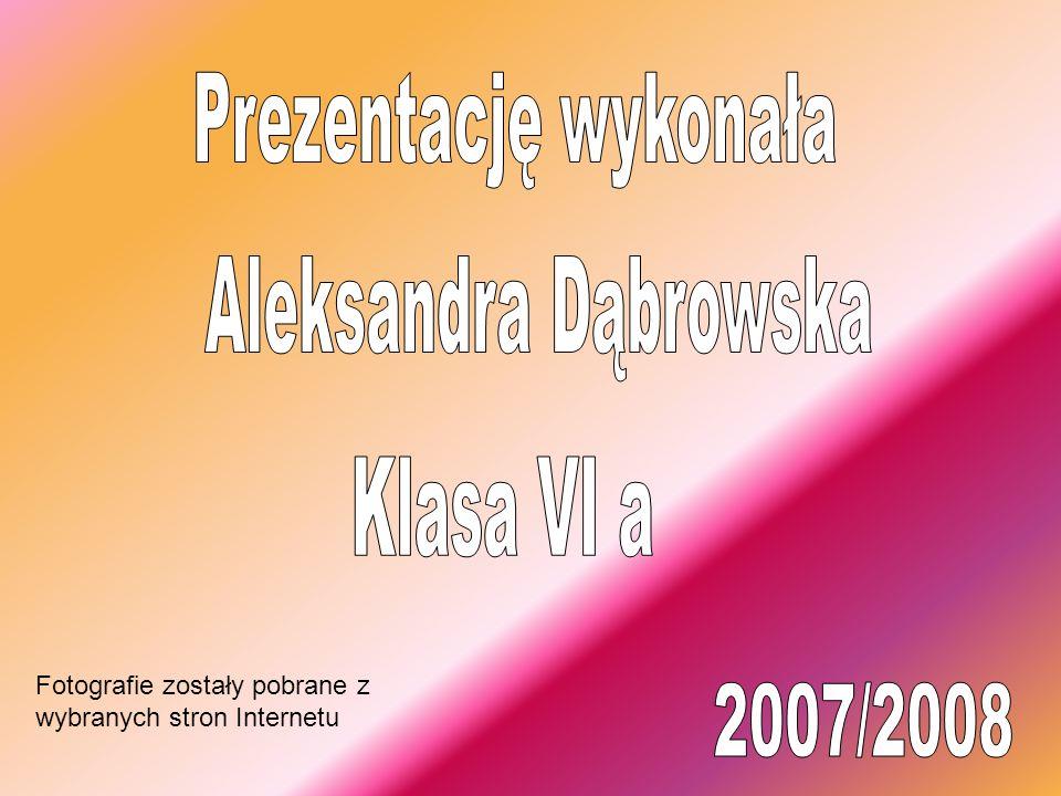 Prezentację wykonała Aleksandra Dąbrowska Klasa VI a 2007/2008