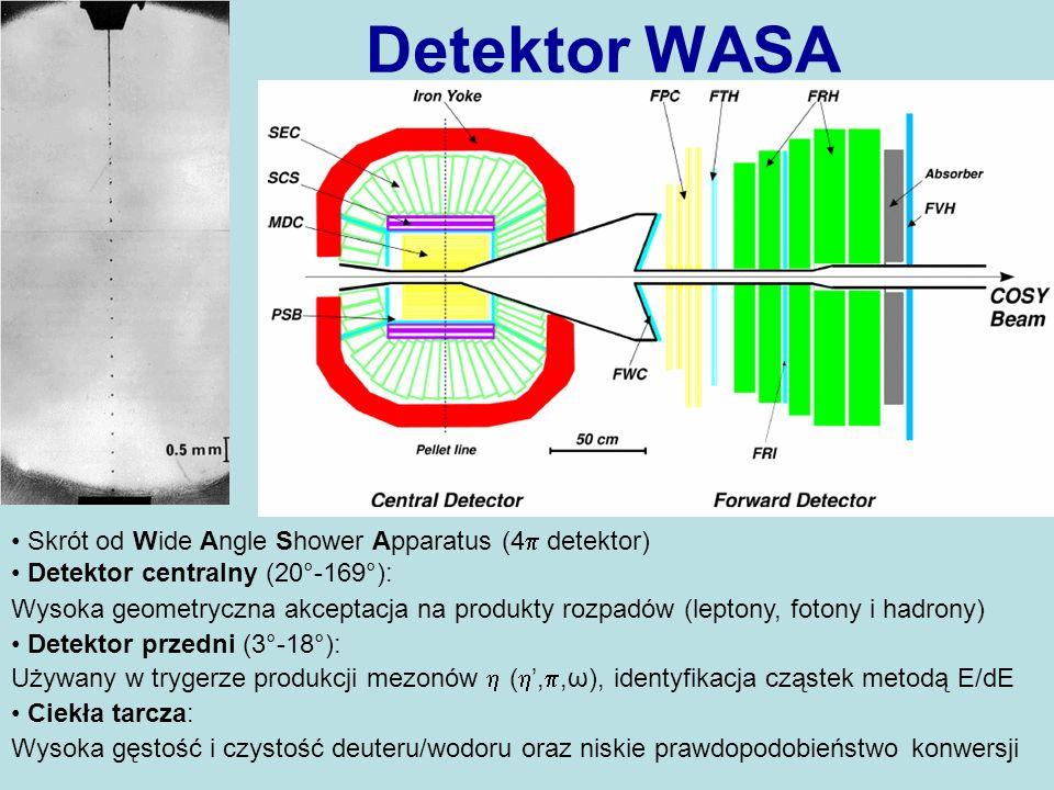 Detektor WASA Skrót od Wide Angle Shower Apparatus (4 detektor)