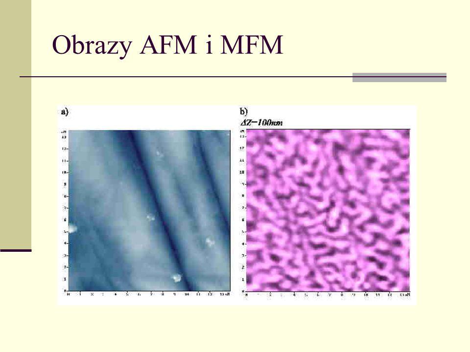 Obrazy AFM i MFM