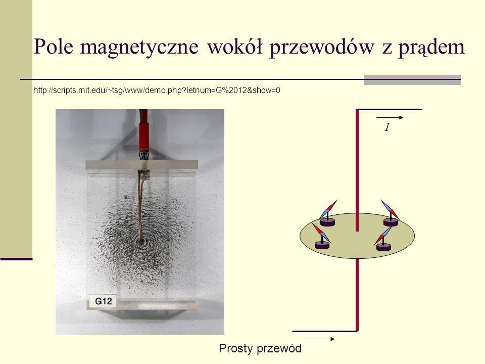 Pole magnetyczne wokół przewodów z prądem