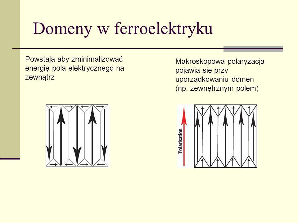 Domeny w ferroelektryku