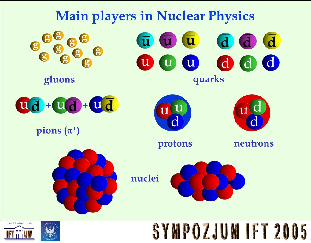 Main players in Nuclear Physics