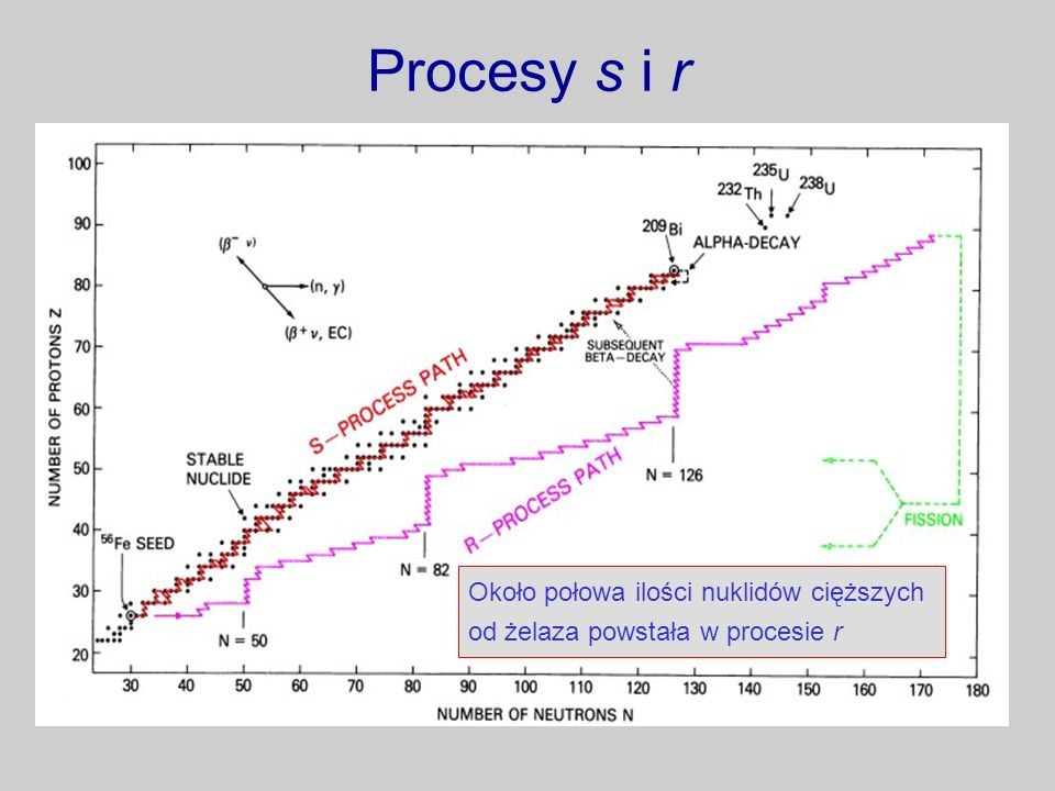 Procesy s i r Około połowa ilości nuklidów cięższych od żelaza powstała w procesie r