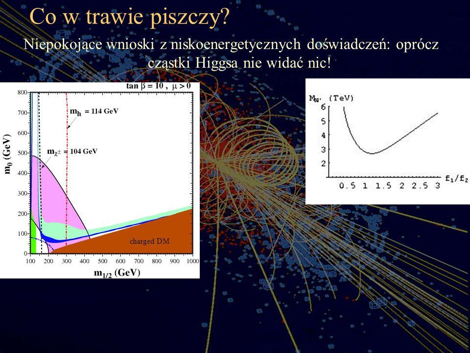 Co w trawie piszczy Niepokojące wnioski z niskoenergetycznych doświadczeń: oprócz cząstki Higgsa nie widać nic!