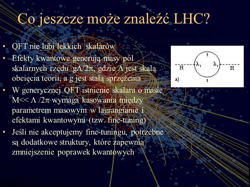 Co jeszcze może znaleźć LHC