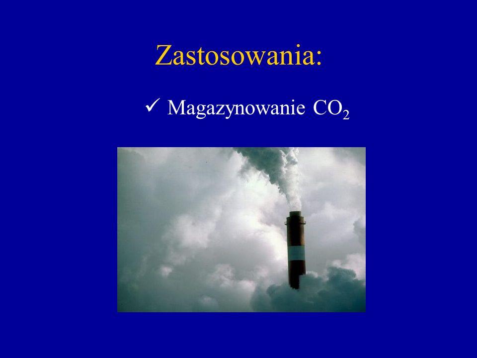 Zastosowania: Magazynowanie CO2