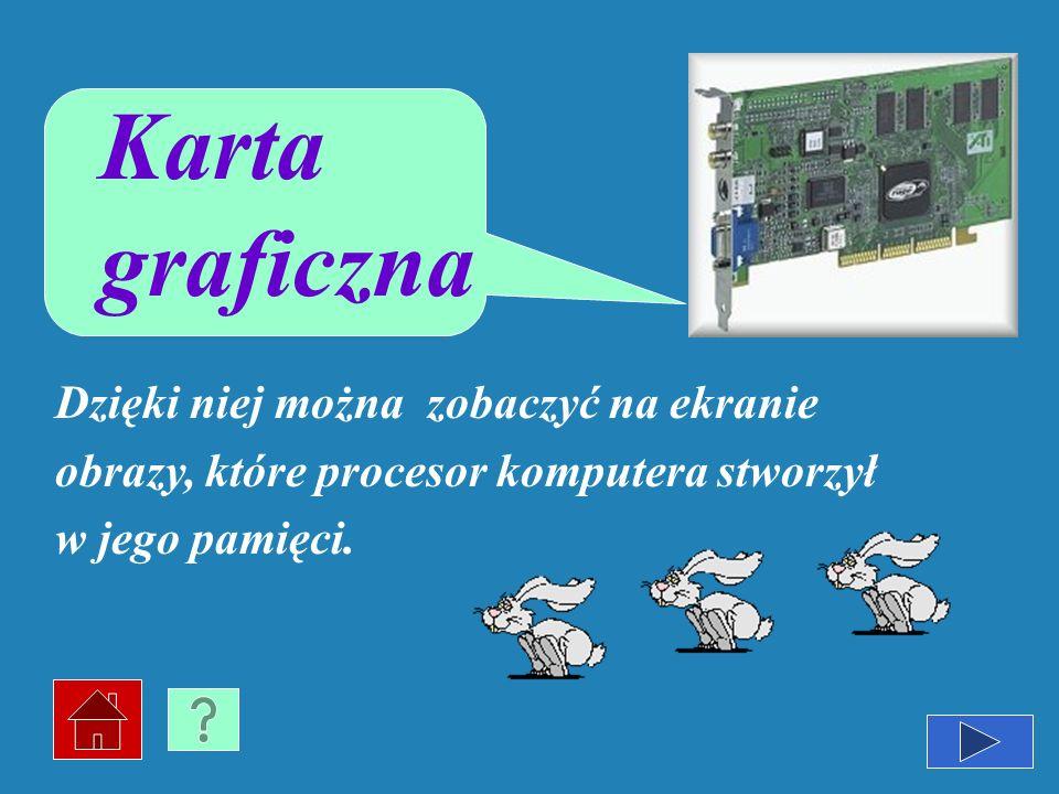 Karta graficzna Dzięki niej można zobaczyć na ekranie obrazy, które procesor komputera stworzył w jego pamięci.
