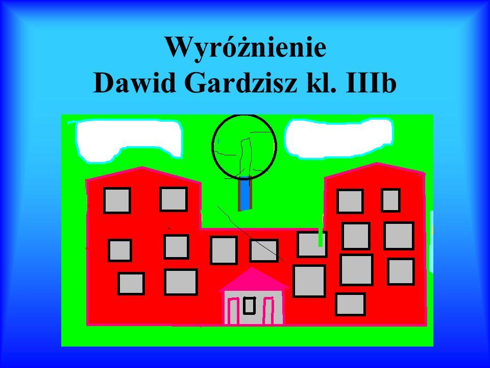 Wyróżnienie Dawid Gardzisz kl. IIIb