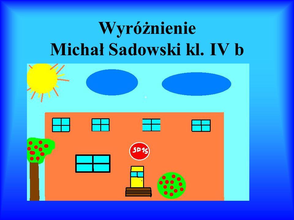 Wyróżnienie Michał Sadowski kl. IV b