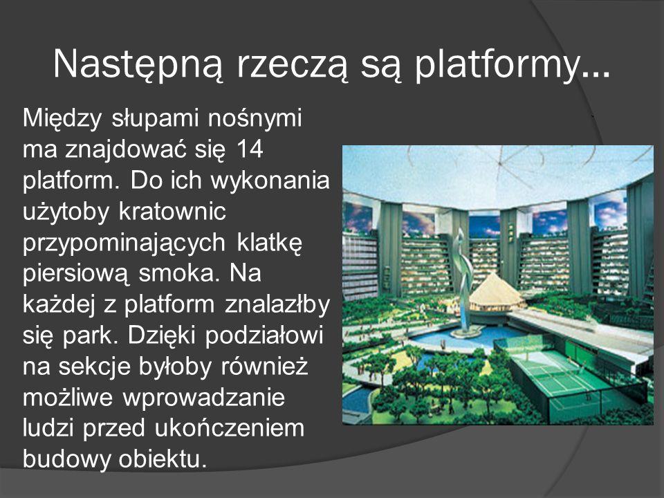 Następną rzeczą są platformy…