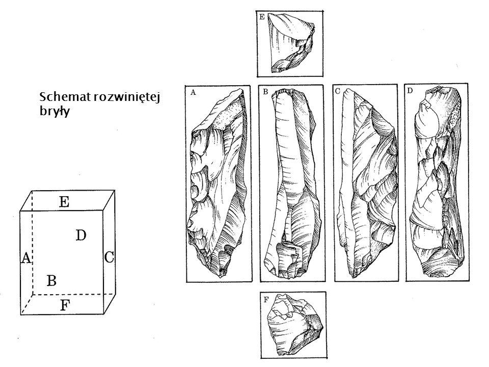Schemat rozwiniętej bryły