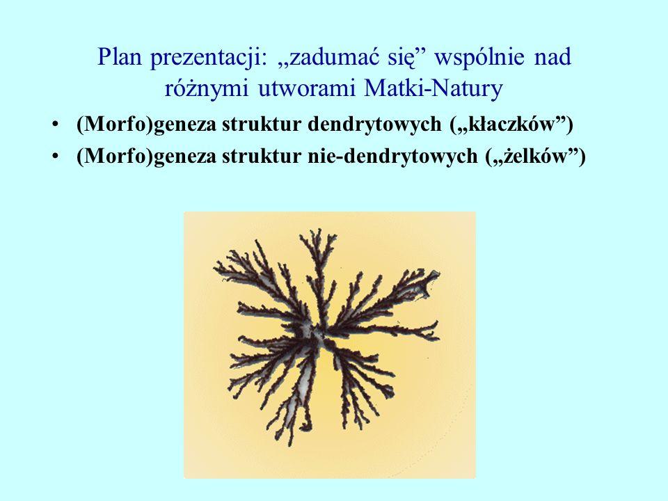"""Plan prezentacji: """"zadumać się wspólnie nad różnymi utworami Matki-Natury"""