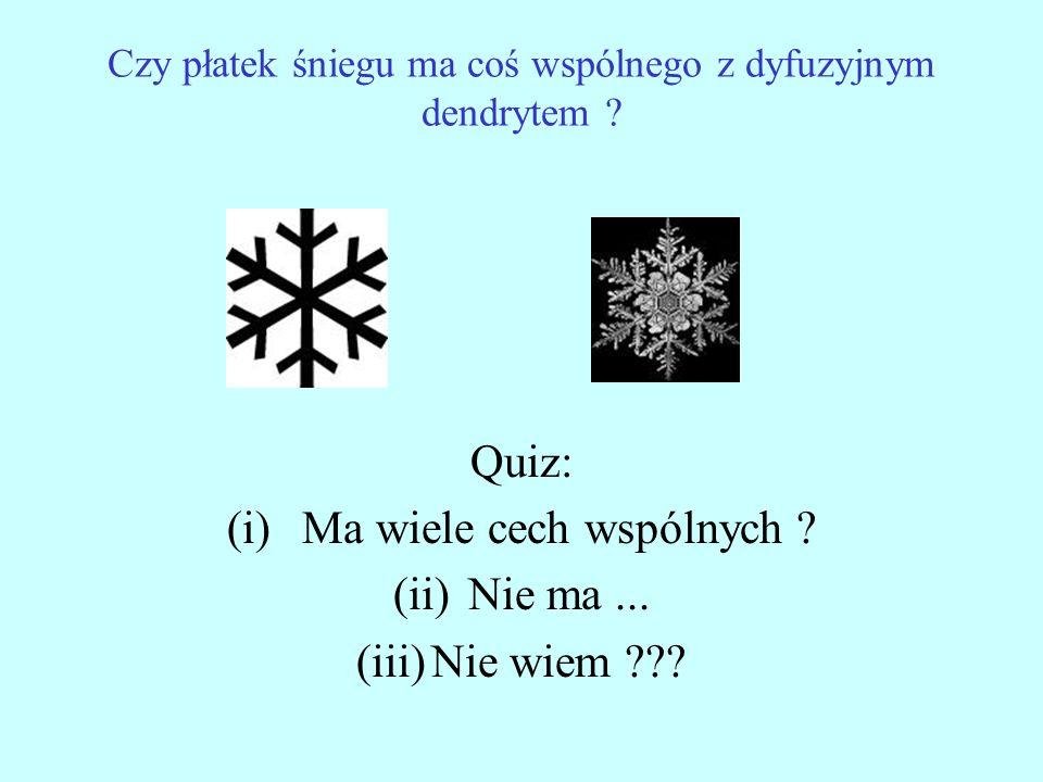 Czy płatek śniegu ma coś wspólnego z dyfuzyjnym dendrytem