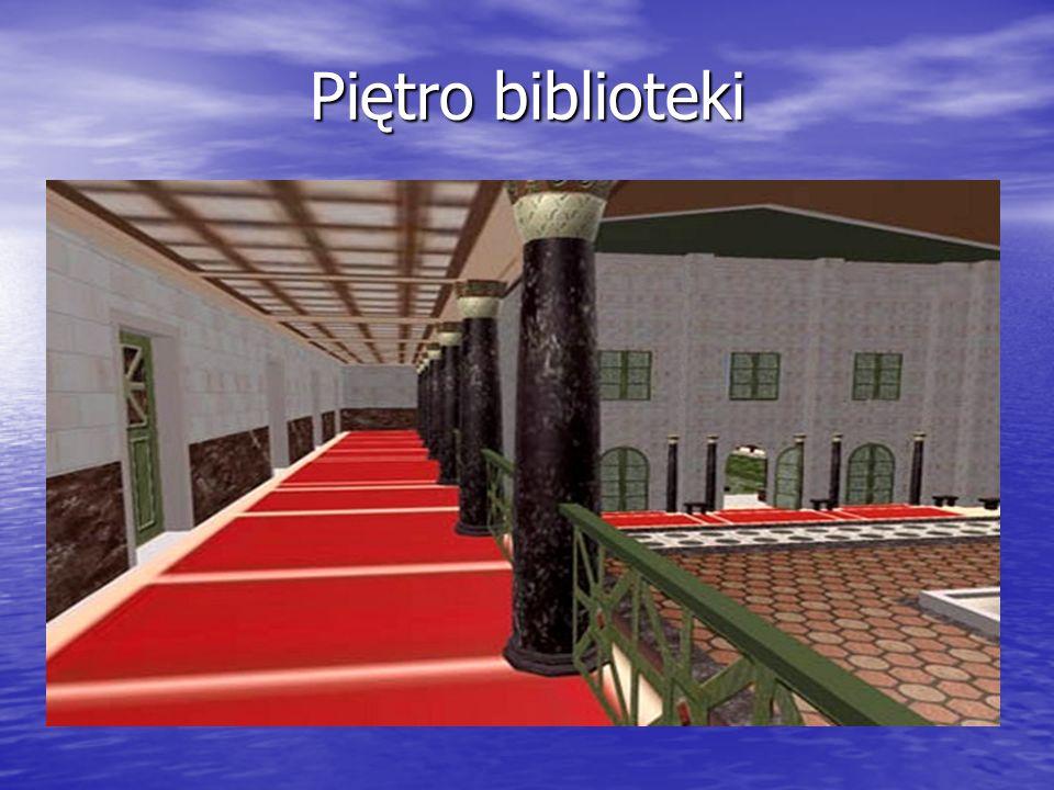 Piętro biblioteki