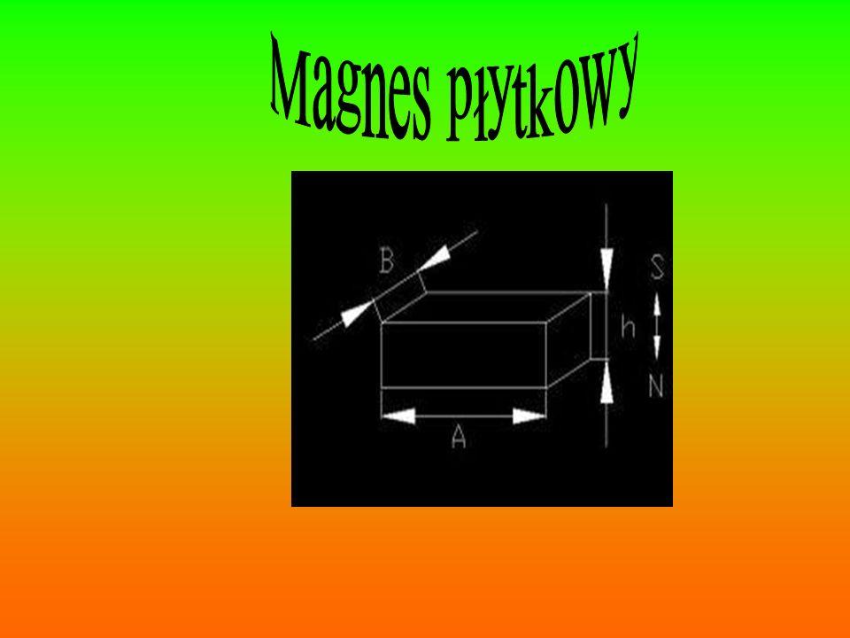 Magnes płytkowy