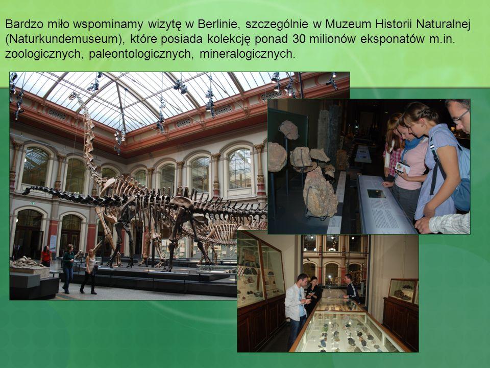 Bardzo miło wspominamy wizytę w Berlinie, szczególnie w Muzeum Historii Naturalnej